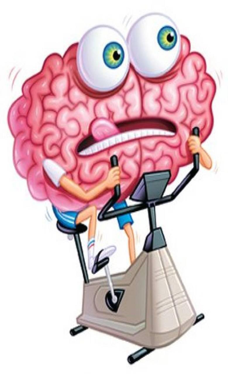 Программу для развития памяти и мышления